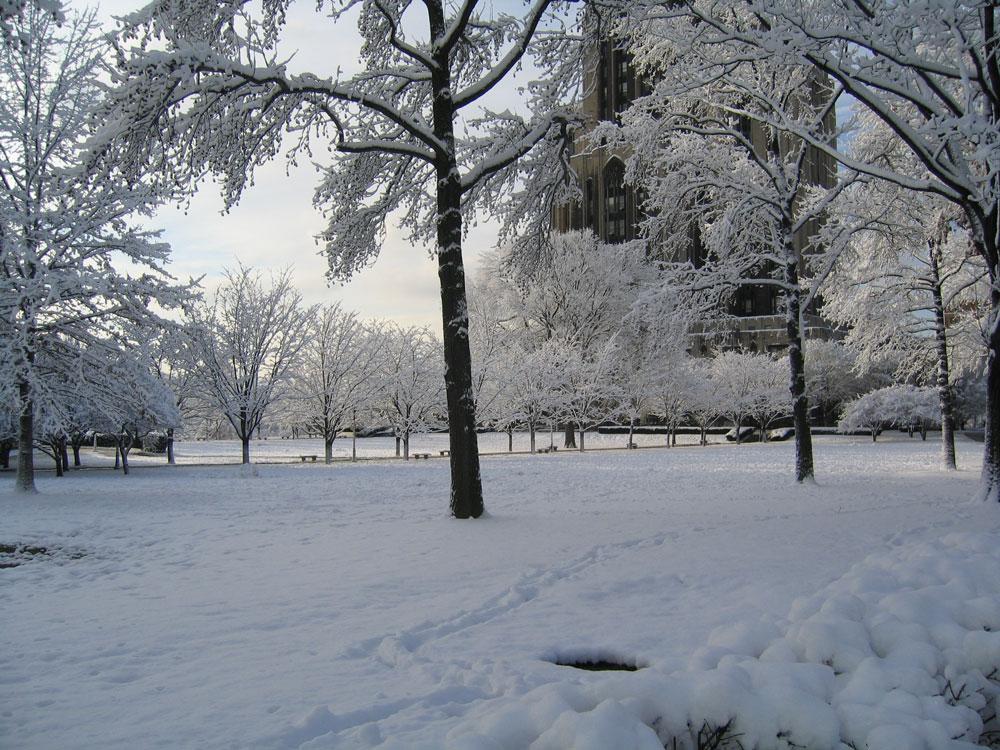 vinterjackor